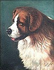 Portrait of a Dog by William McElhinney