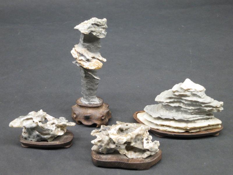 Four small Scholars Rocks