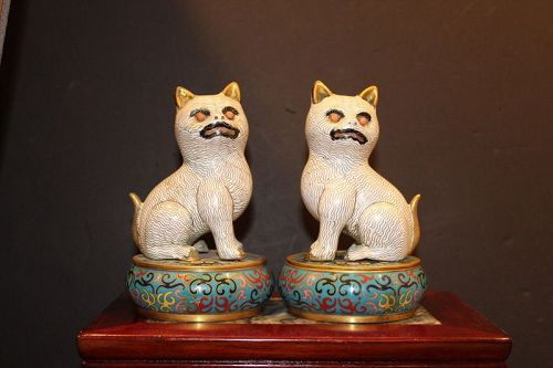 A pair of Chinese cloisonné cat decorated lidded boxes.