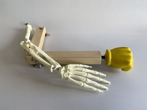 ARM-JOINT-MODEL
