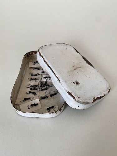 FAKE ANTS AND ENAMELED WARE
