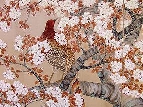 Antique Japanese Cherry Blossom Screen, Pheasant