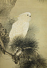 Parrot in Pine, Painting by Imao Keinen