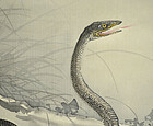 Antique Japanese Scroll, Snake by Utsumi Koho, 1901