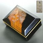 Exquisite Set of 5 Antique Lacquered Feather Boxes by Shunji