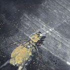 Kobayakawa Shusei Gold Dragon Scroll