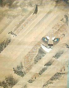 RARE EDO P. Japanese BLUE EYED TIGER SCROLL