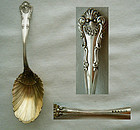 "Durgin ""New Queens"" Sterling Silver Tea Caddy Spoon"