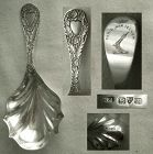 "English Sterling Silver Tea Caddy Spoon, Crested, 1908, ""MF"" Maker"