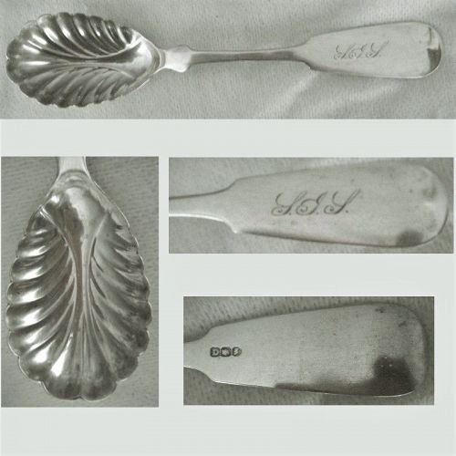 """Hall Hewson & Brower Albany """"Tipt"""" Shell Bowl Coin Silver Sugar Spoon"""