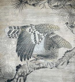 Chinese hanging scroll of an eagle
