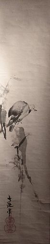Authentic Tani Buncho Scroll Painting of a Pigeon