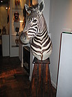 a burchell zebra on pedestal