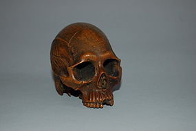 Wooden study of human skull, Japan, Meiji period
