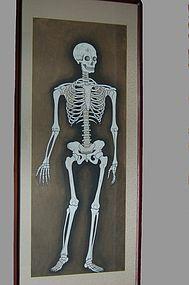 Painting, skeleton, Japan, Edo / Meiji era