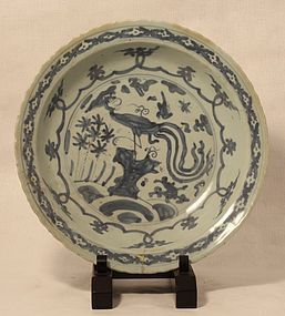 Ming Dynasty blue and white foliate rim charger