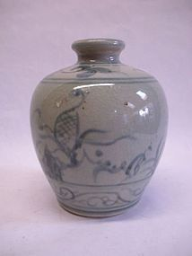 Chinese Qing Dynasty blue and white porcelain jar vase