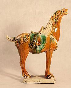 Chinese Tang style Sancai Glazed  Horse