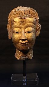 Lifesize Ayutthaya Stucco and Gold Leaf Buddha Temple head v3