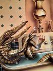 David Delamere hand signed print Lady Alligator in Tub
