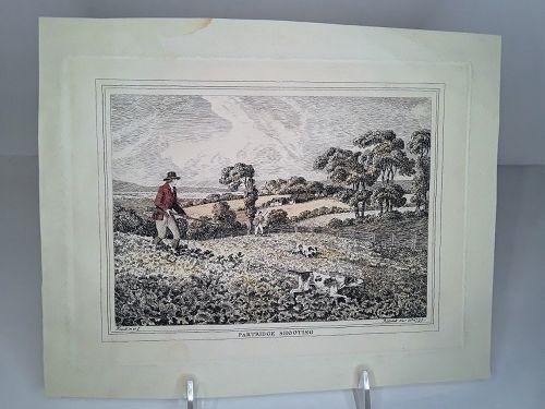 Samuel Howitt  Partridge-shooting 1798