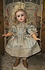 Pretty French Bisque Bebe by Jumeau in all original Condition