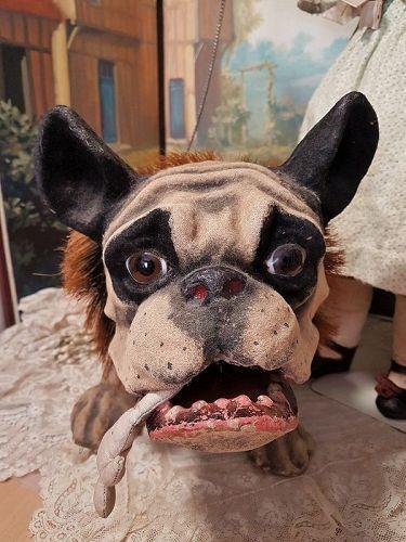 ~~~ Most Beautiful Rare English Pull-Toy Bulldog ~~~