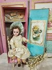Stunning Factory Original small Bisque Bebe in her Presentation Box