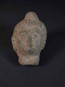Afghan Gandhara carved stone Buddha head