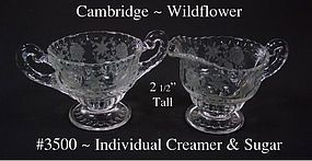 Cambridge Wildflower 3500 Individual Creamer and Sugar