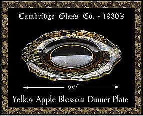Cambridge Yellow Apple Blossom Dinner Plate