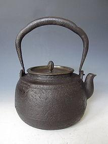 Antique Japanese Iron Tetsubin