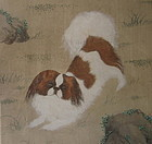 Chinese Antique Painting of a Pekingese Dog