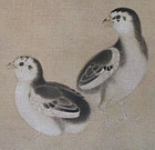 Chinese Print of Young Birds