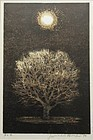 Japanese Framed Woodblock Print by Joichi Hoshi