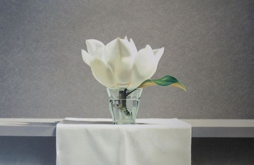 Lithograph Print by Guy Diehl - Still Life Magnolia