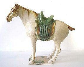 Chinese Tang Dynasty Tomb Pottery Horse